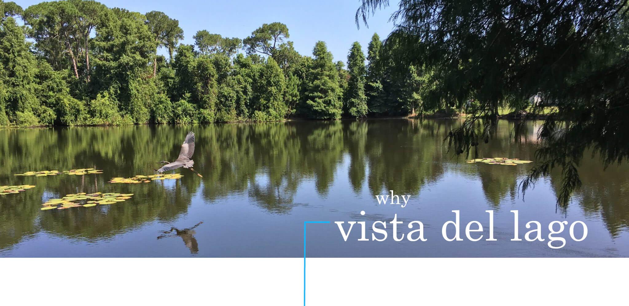 Why Vista